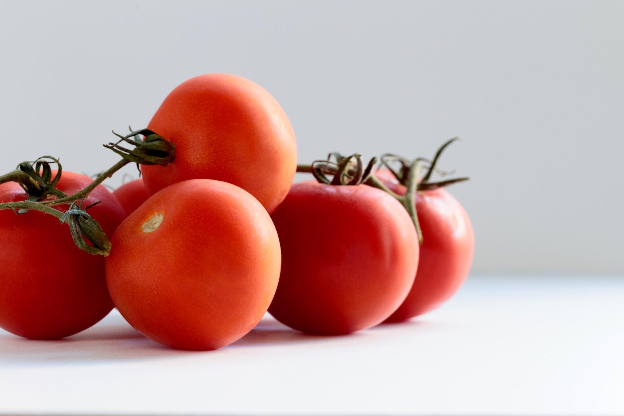tomate-photo.jpg