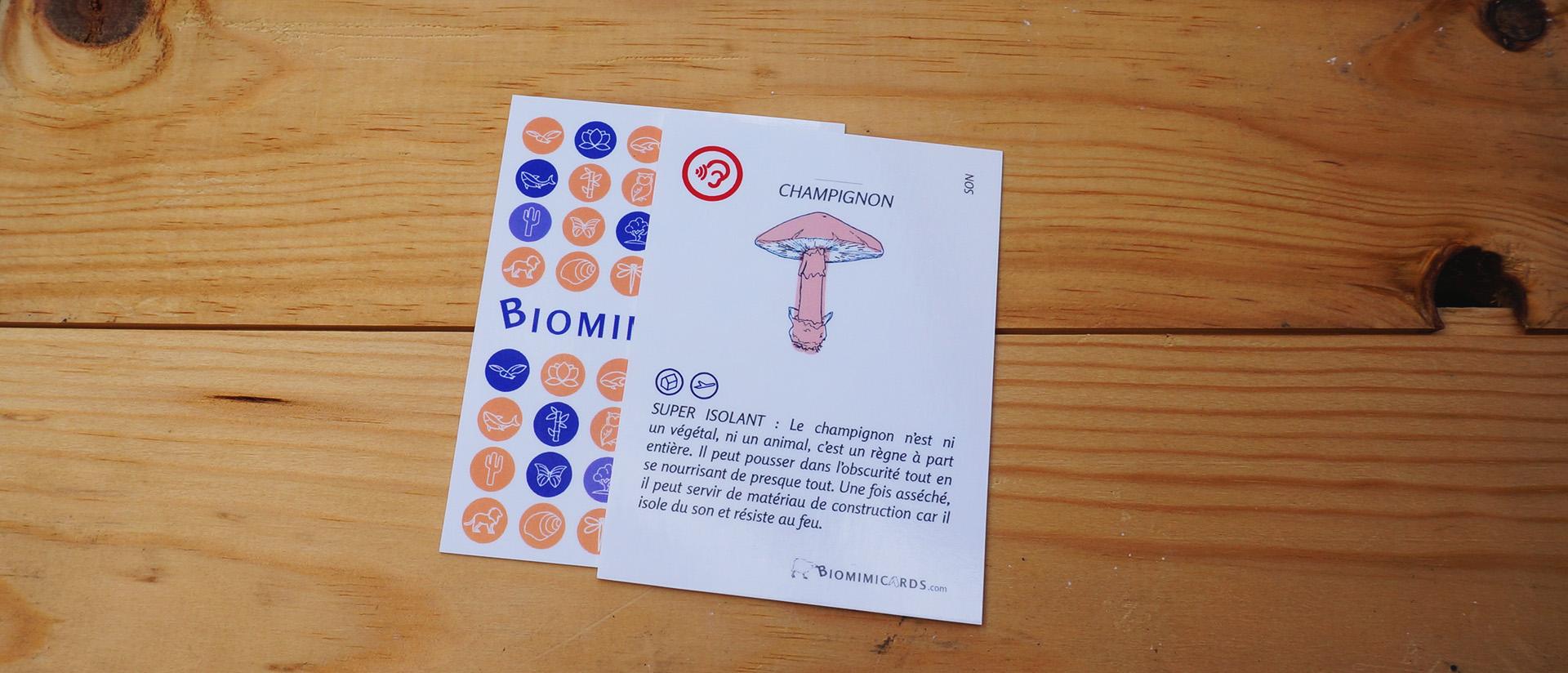 carte-son-champignon.jpg